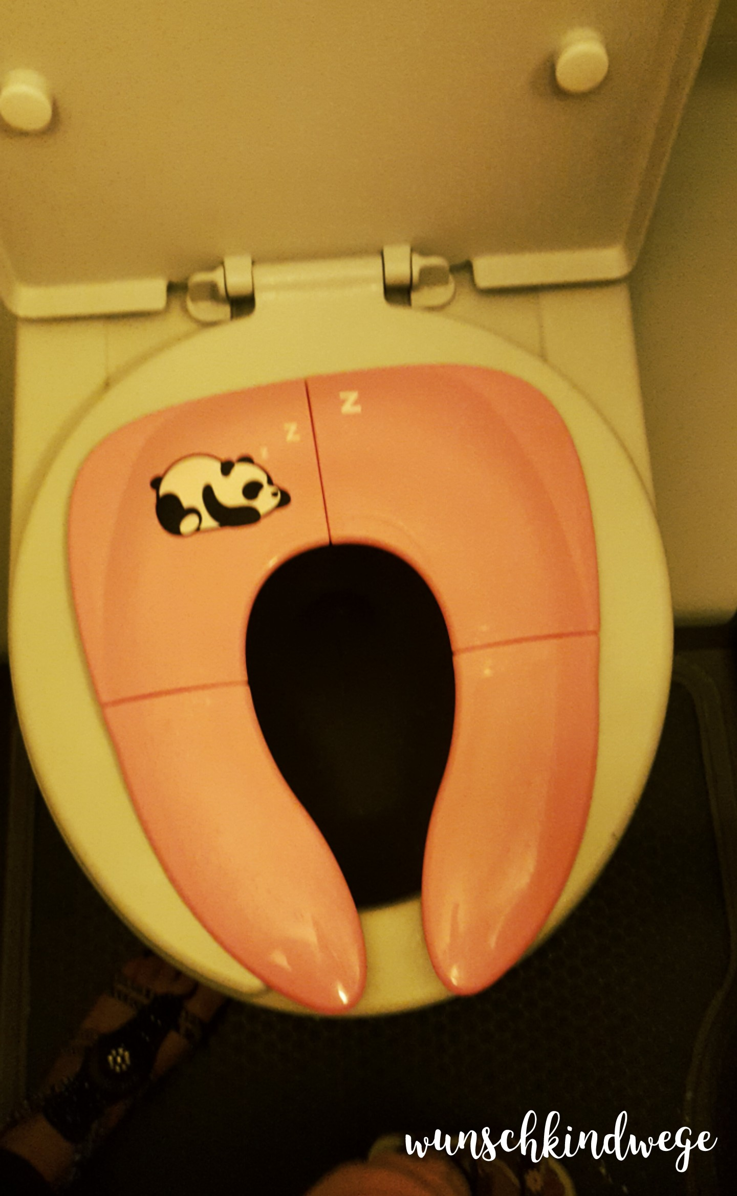 Florida mit Kindern: Faltbarer WC Sitz Flugzeug