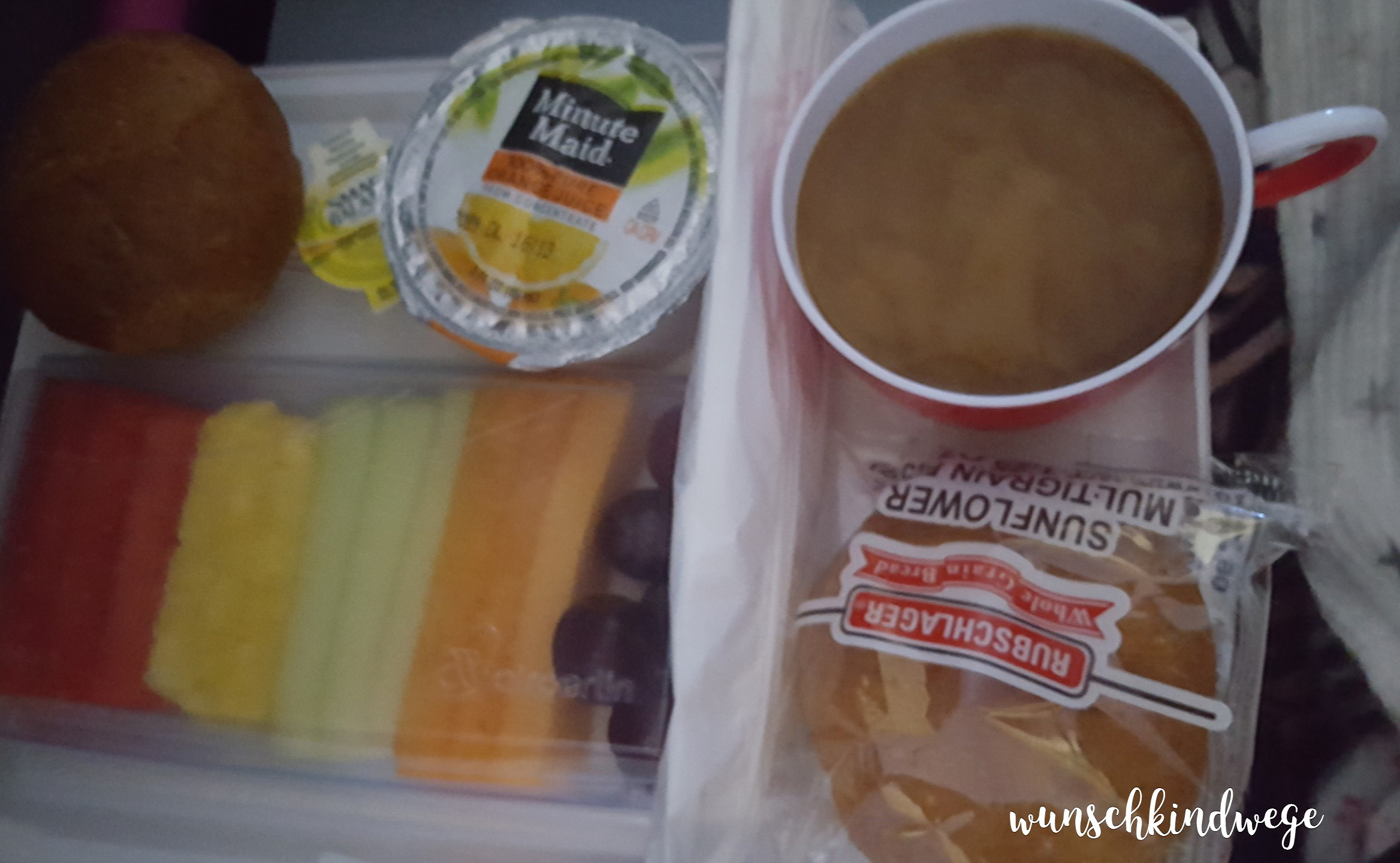 vegetarisches Frühstück Flugzeug USA Florida Rückflug