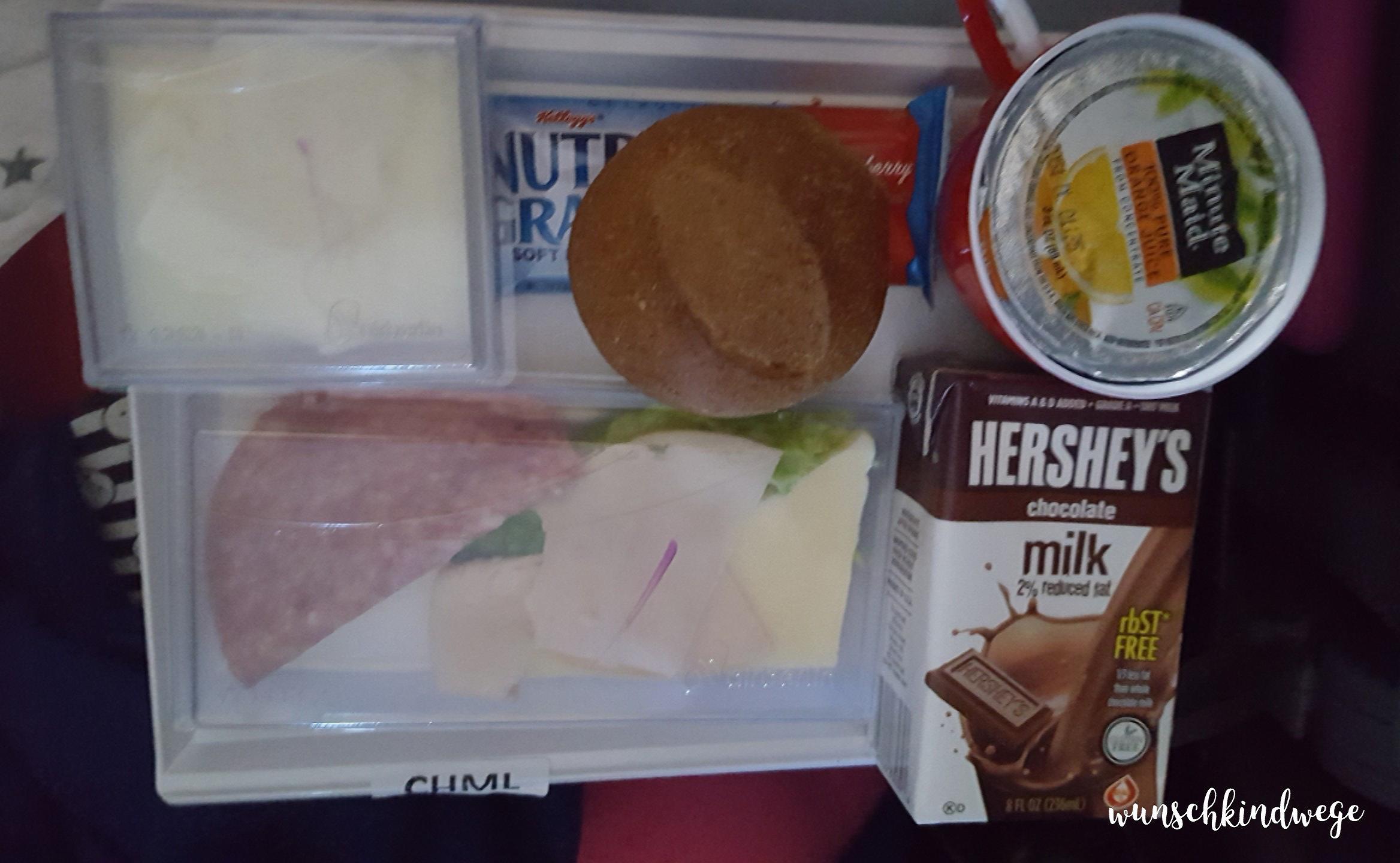 Kinderessen Frühstück Flugzeug USA Florida Rückflug