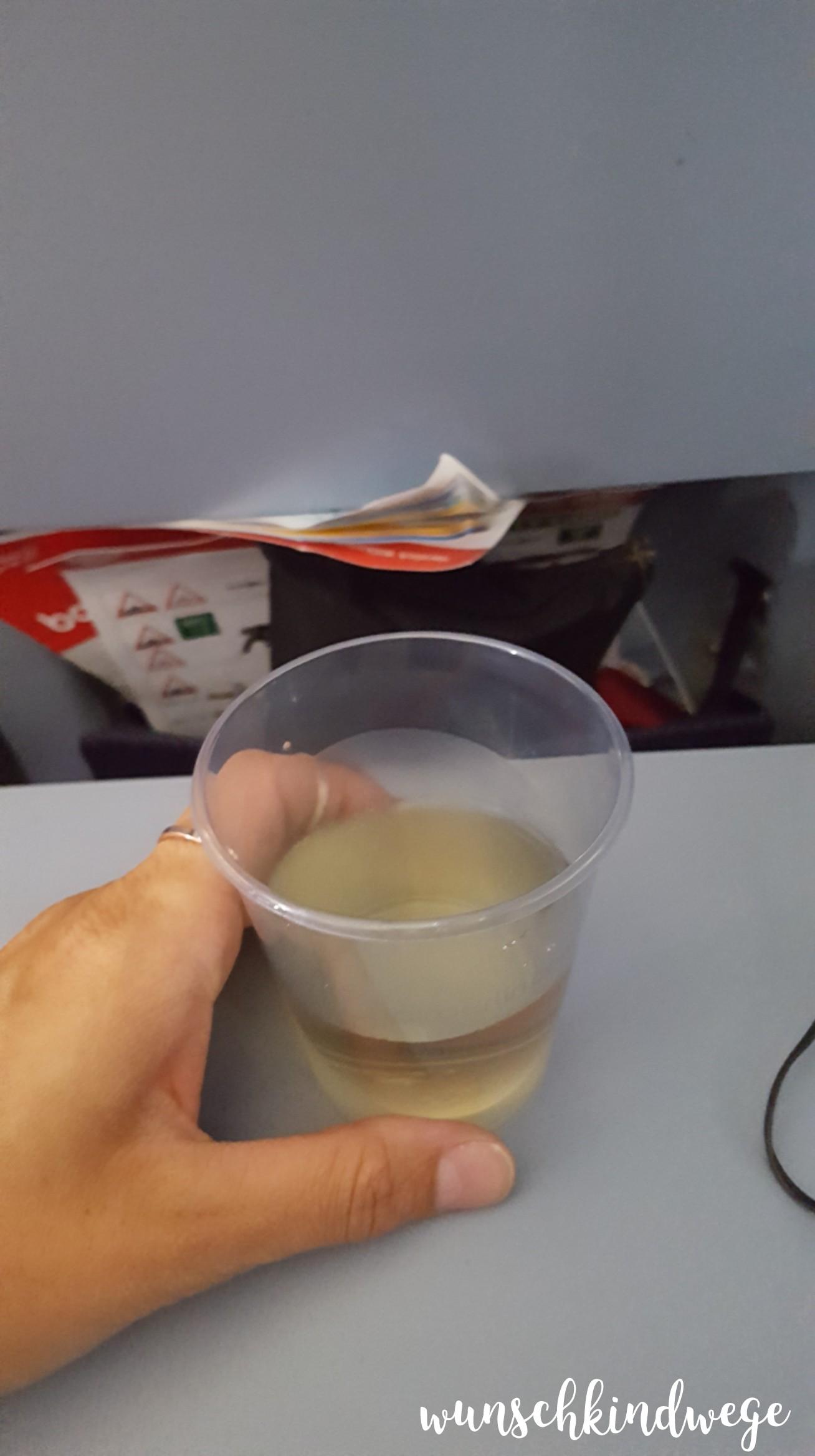Flugzeug Becher Weißwein Florida Rückflug