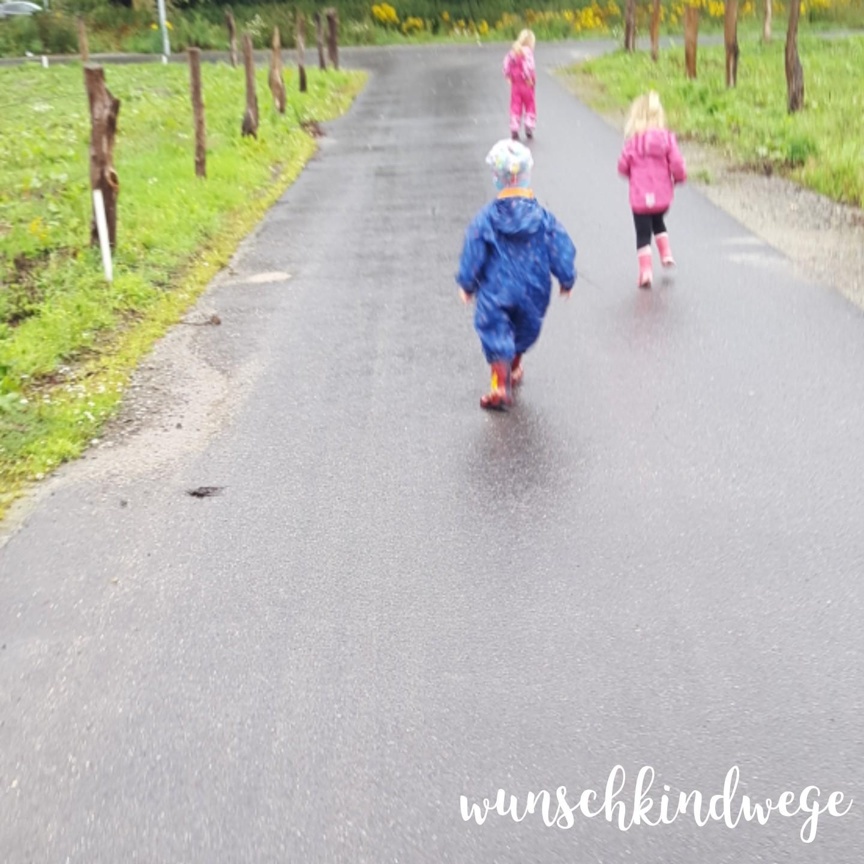 12 von 12 Juli 2017: Spaziergang im Regen