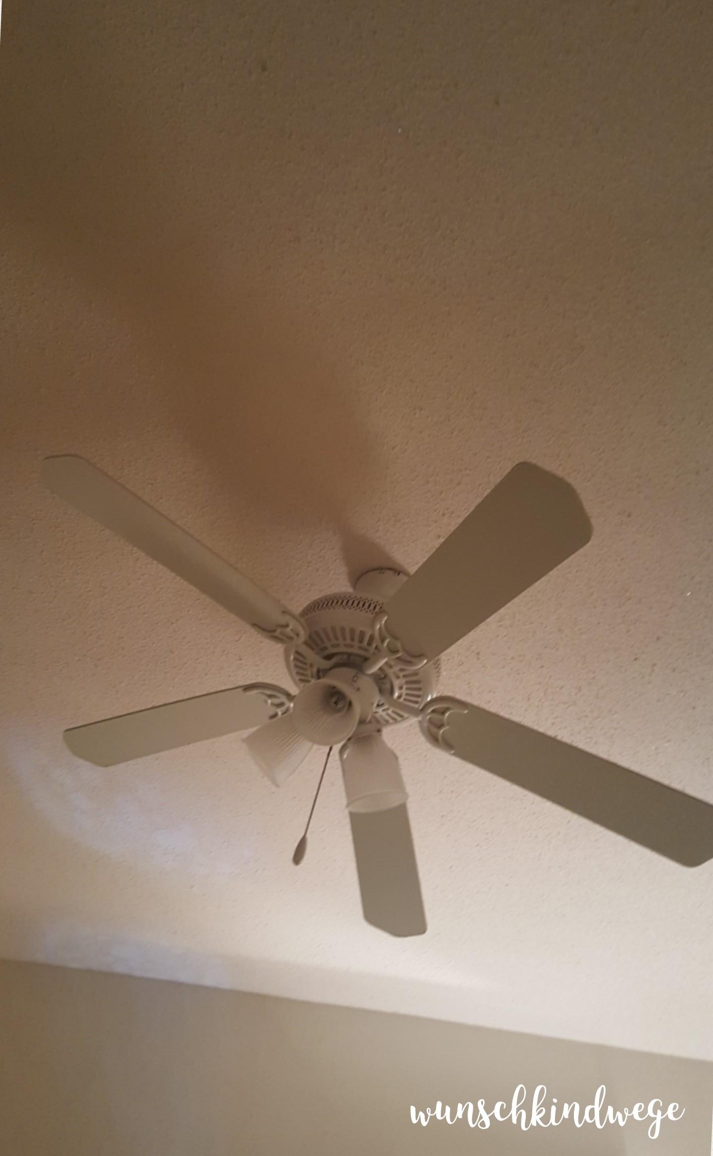 Florida mit Kindern: Ventilator