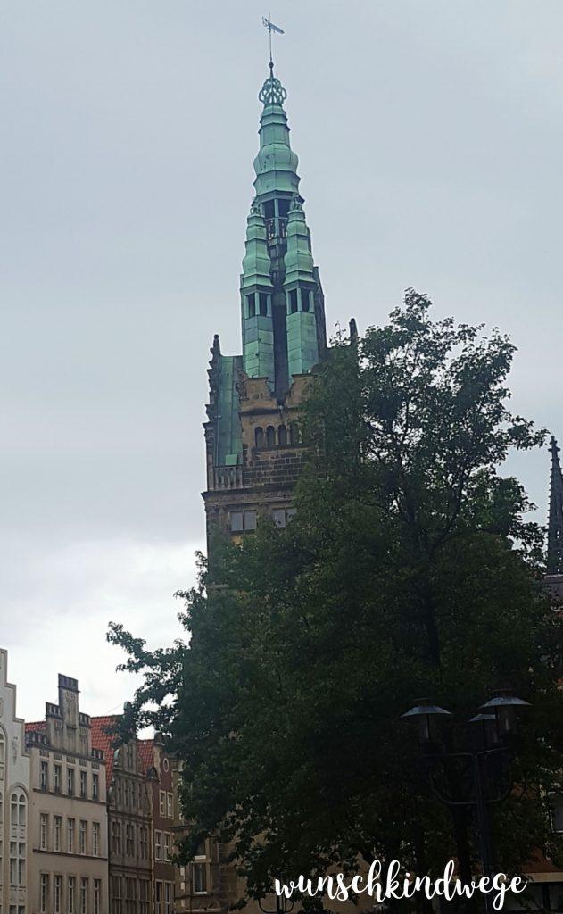 WMDEDGT 08/2017 Münster