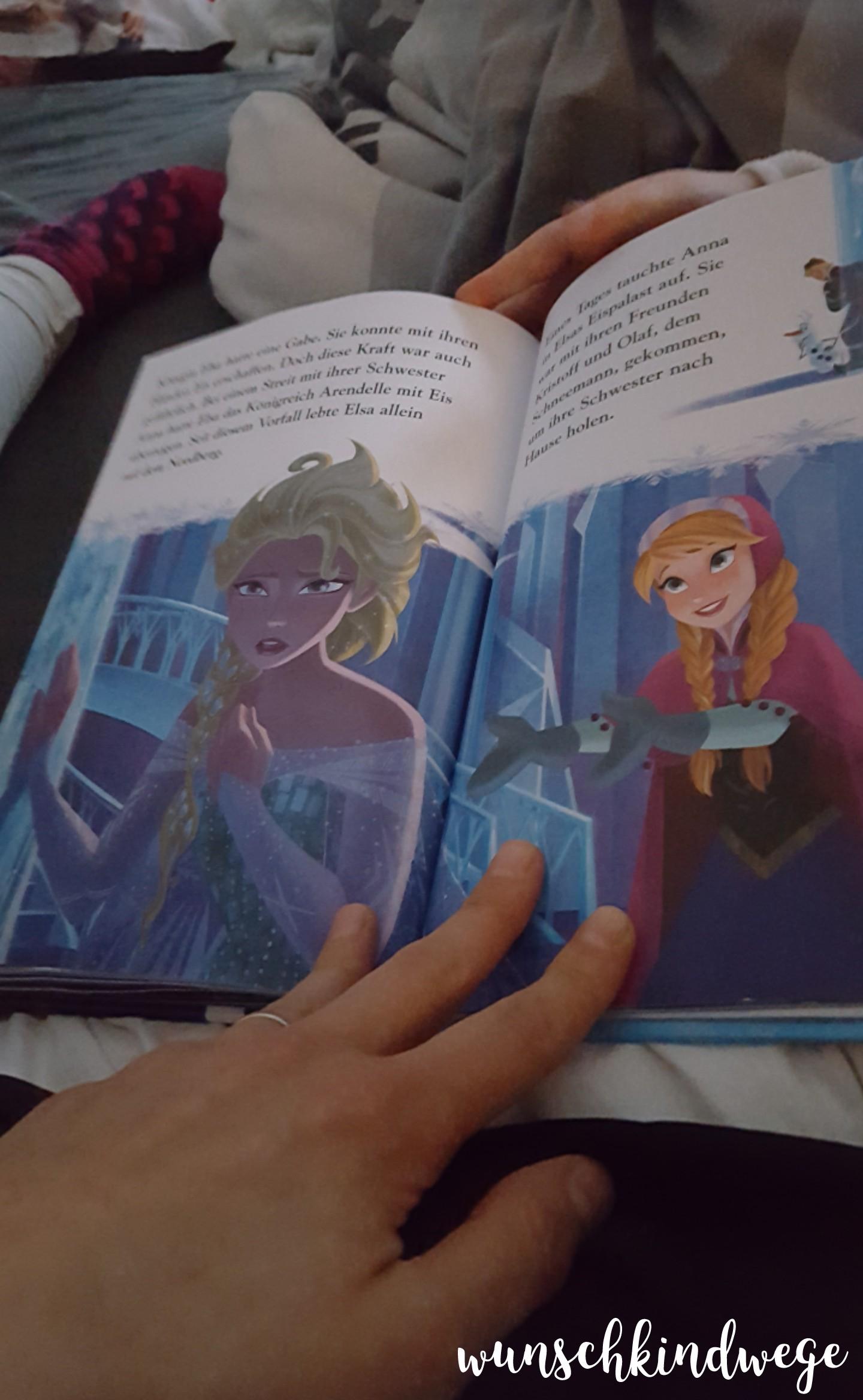 Elsa Buch 12 von 12 - Januar 2018