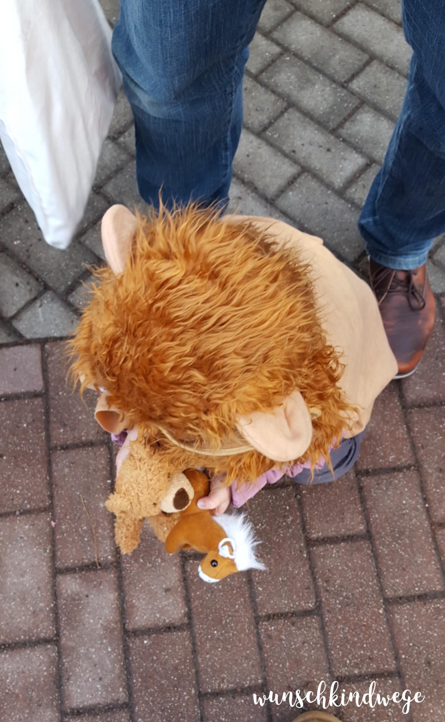 Karnevalswochenende kleiner Löwe