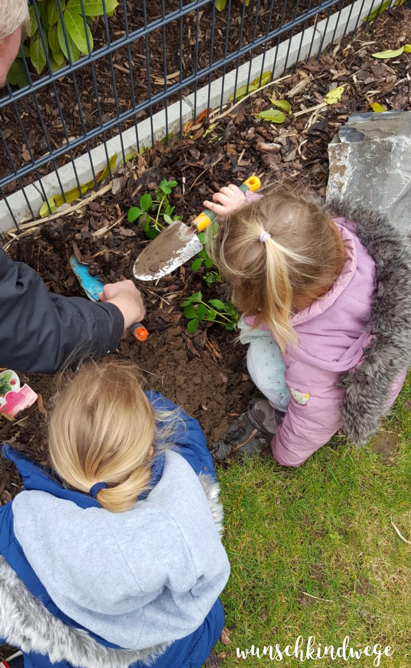 Osterwochenende in Bildern: Gartenarbeit