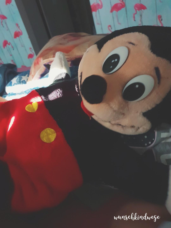 Wochenende in Bildern - Mickey Mouse