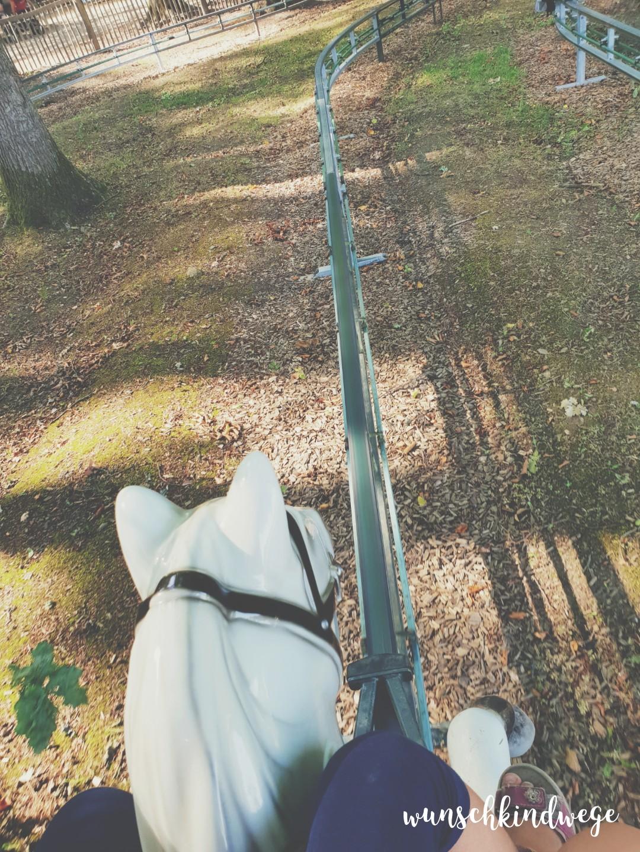 Wochenende in Bildern - Kettler Hof - Elektropferde