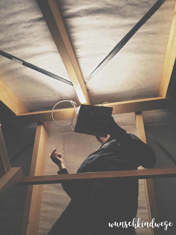 Wochenende in Bildern - Dachboden Wespenjagd