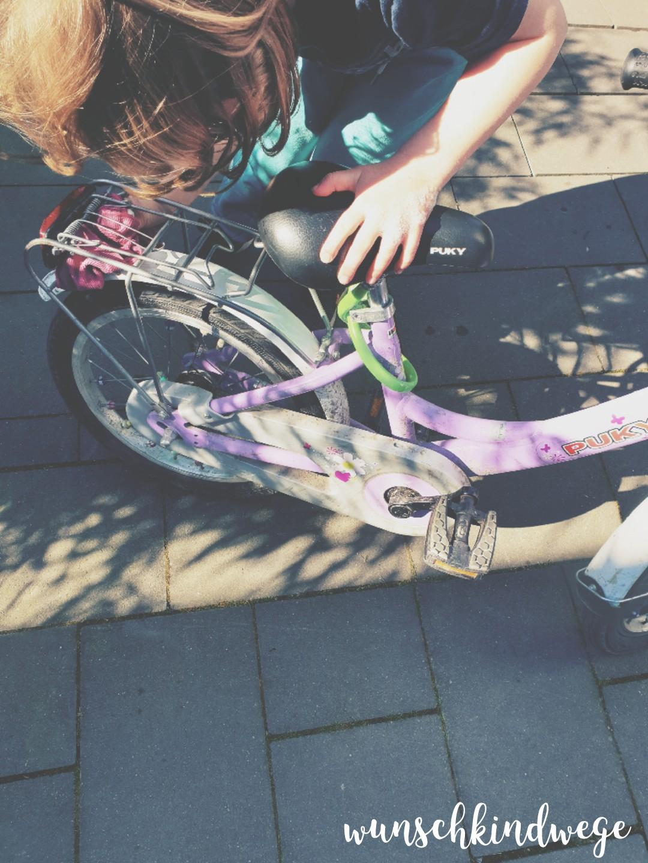 Fahrrad putzen