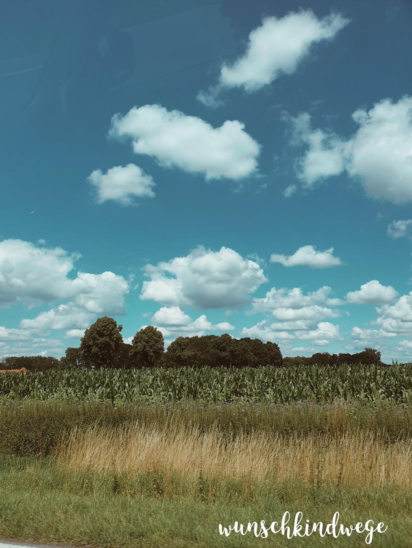 Landschaft blauer Himmel 12 von 12