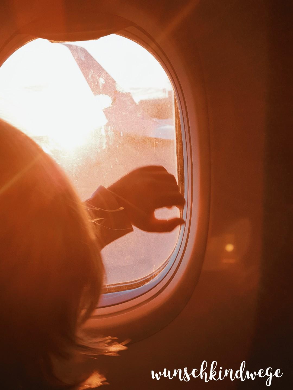 Fensterplatz Flugzeug Kind