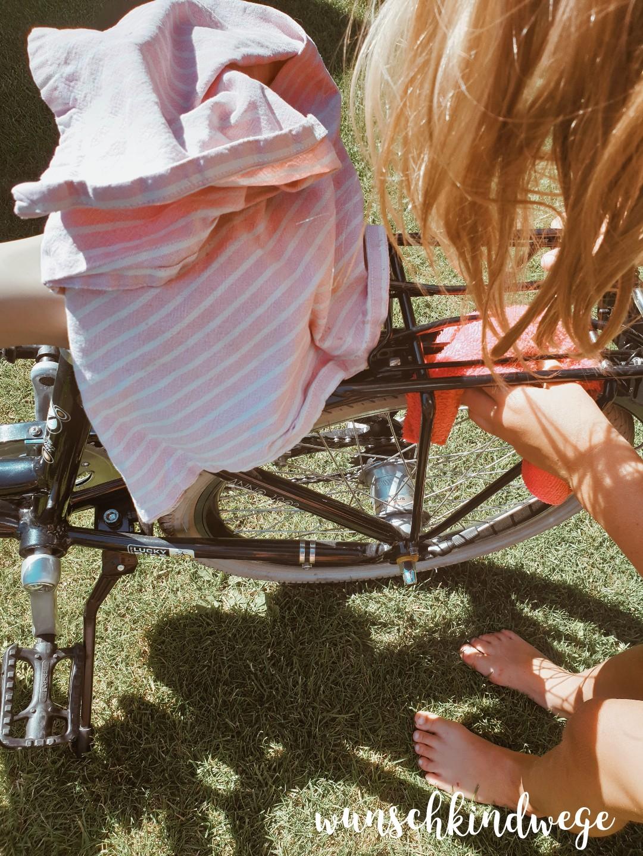 WMDEDGT Fahrrad putzen