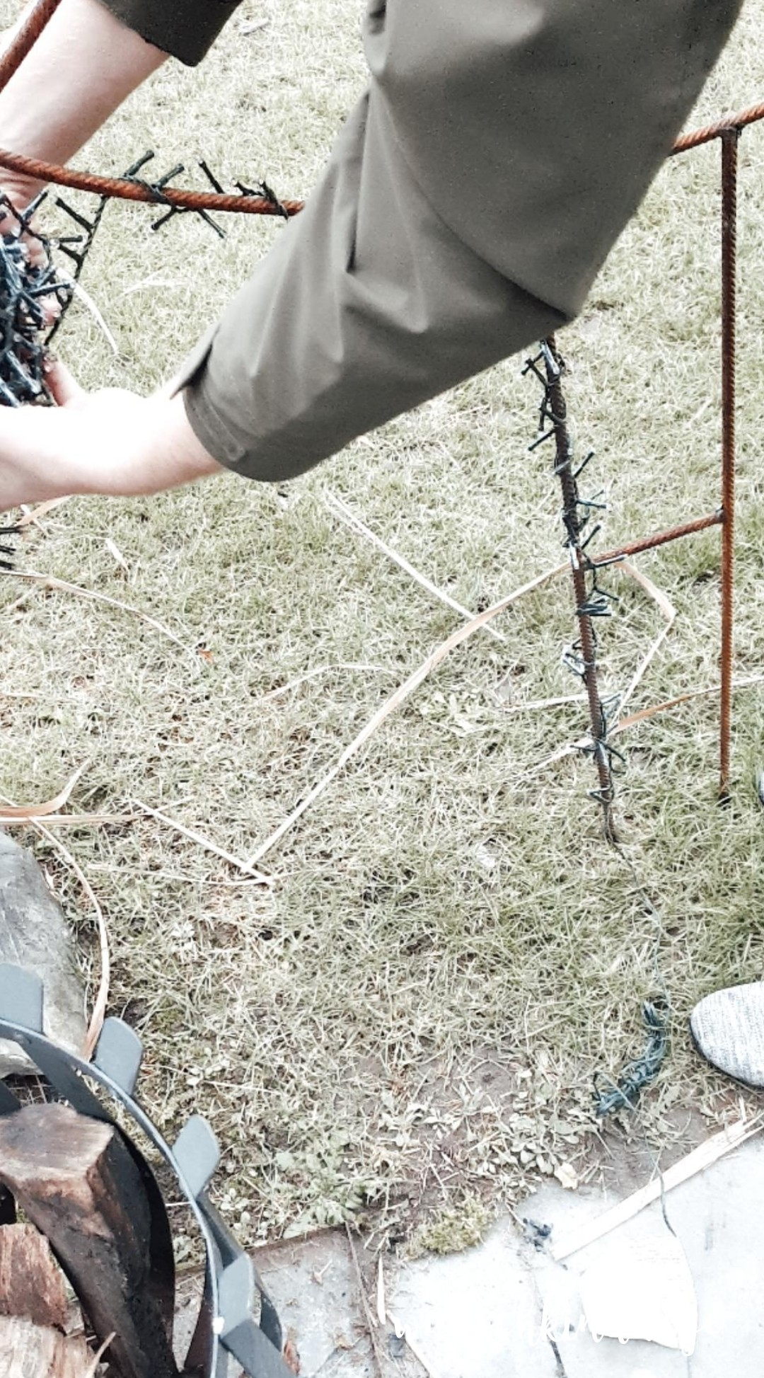 Stahltannenbaum 12 von 12
